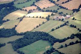 farmland.jpg