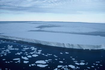 ice shelf.jpg
